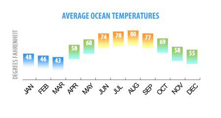 Average Outer Banks Ocean Temps by Month