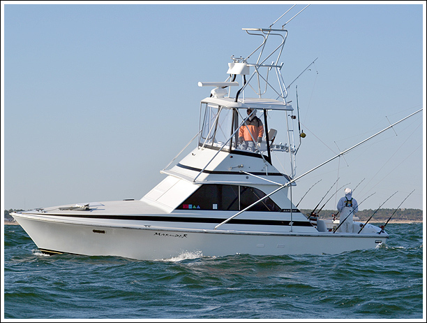 Marauder sportfishing charters visit outer banks obx for Fishing outer banks nc