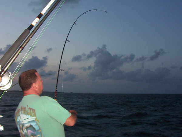 Outer banks fishing charters visit outer banks obx for Outer banks sound fishing