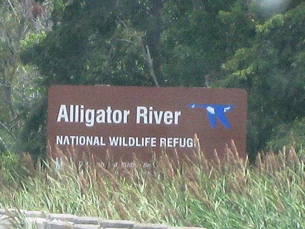 alligator-river-outer-banks-001.jpg