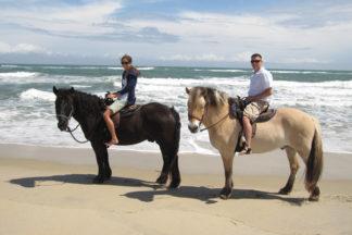 hatteras-horseback-riding-outer-banks-001.jpg