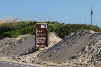 pea-island-outer-banks-nc-600x400-001.jpg